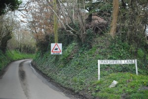 The accident happened in Marshfield Lane where there are signs warning motorists to keep an eye out for horses