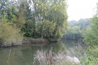The River Avon at Hanham