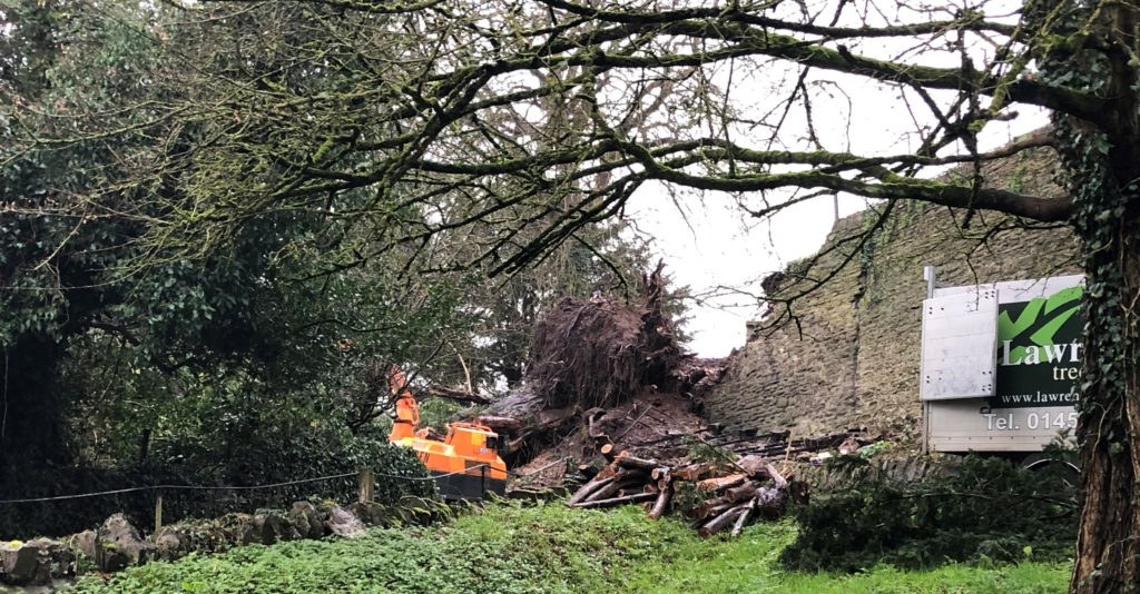 Ancient tree and churchyard wall come crashing down - The ...